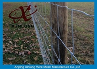 চীন Commercial Galvanized Field Fence For Live Stock Easy Maintenance  কোম্পানির